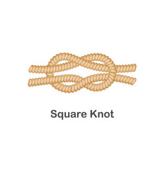 type nautical or marine node square knot for vector image