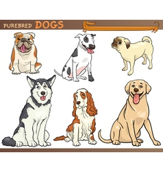 purebred dogs cartoon set vector image