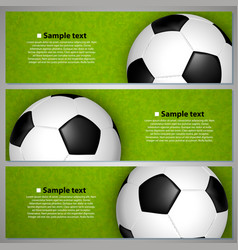 soccer ball on the field vector image vector image