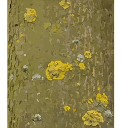 Tree bark with lichens texture vector