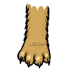 cartoon image of cat paw icon logo concept vector image