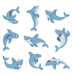 cartoon shark graphic sharks cute fish for boys vector image