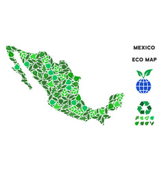 Ecology green composition mexico map vector