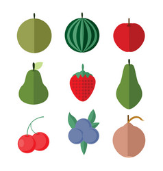 simple flat fruits set vector image