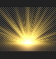 Sunlight isolated golden sun rays radiance vector