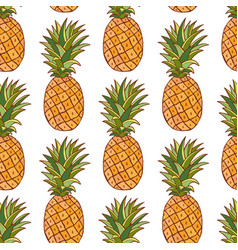 pineapples pattern hand drawn seamless texture on vector image vector image