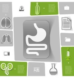 Medical sticker infographic vector image