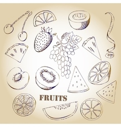Background with fruit-03 vector image