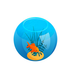 Ball shaped aquarium composition vector