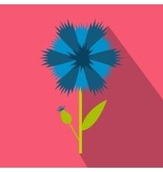 Blue cornflower icon flat style vector