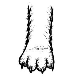 cartoon image of cat paw icon logo concept vector image vector image