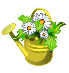 flower pot in shape a watering can yellow vector image