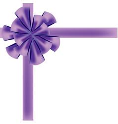 holiday bow ribbon vector image