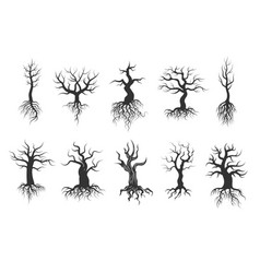 Old tree silhouettes with roots set vector