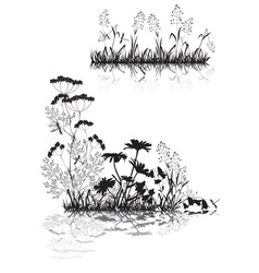 Silhouettes grass and flowers vector