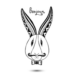 stylish rabbit with mustaches hand drawing vector image