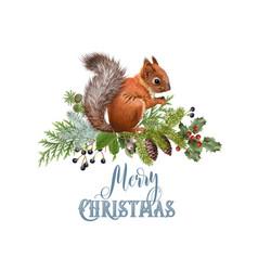 Winter squirrel composition vector