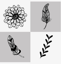 set rustic flowers with leaf and branches and vector image vector image