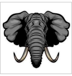 Elephant head Isolated on white vector image