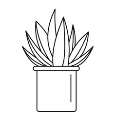 aloe cactus pot icon outline style vector image