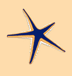 Blue starfish with orange contur on the brown vector
