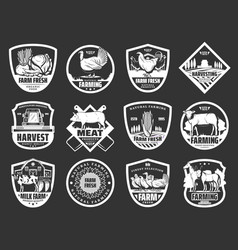 farm dairy and cattle meat or fowl products icons vector image