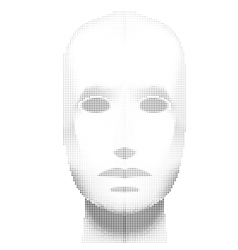 Female Head Blank halfone Mannequin - Front view vector