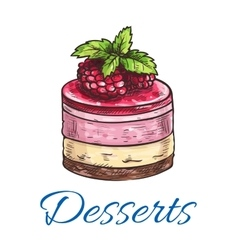 Fruit dessert or berry cake with raspberry sketch vector