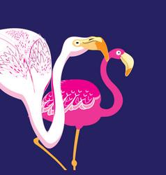Graphics beautiful portraits of pink flamingos vector