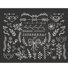 Set of floral hand-drawn elements vector