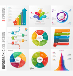 infographic collection of 5 options vector image
