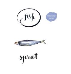Sprat silver fish vector