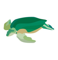 cartoon green turtle isolated on white background vector image