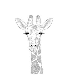 cute giraffe portrait vector image