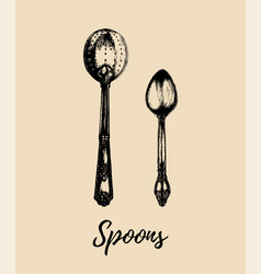 hand drawn tea spoons set retro vector image