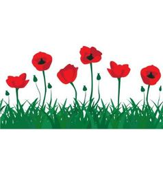 seamless pattern of red poppies vector image