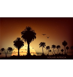 Sunsets over the savanna with palm trees vector