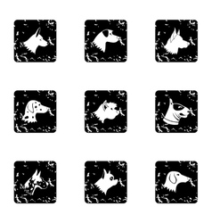 Types of dogs icons set grunge style vector