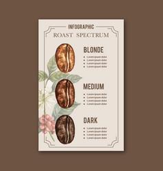 Coffee arabica roast beans burn type vector