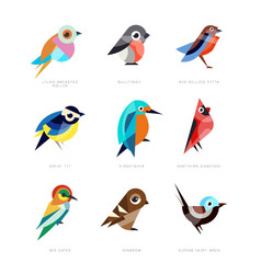 Different birds set lilac breasted roller vector