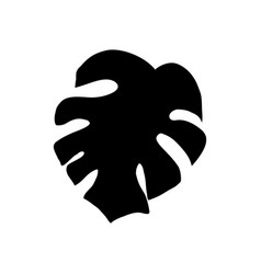 monstera leaf silhouette vector image