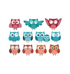 Owl nice logo bundle vector