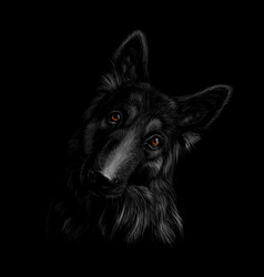 Portrait of a german shepherd dog on a black vector