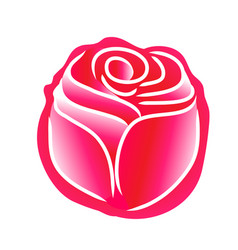 Rose line pattern on white background vector