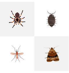 Set of insect realistic symbols with bug mosquito vector