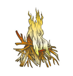 traditional burning timbered stick color vintage vector image