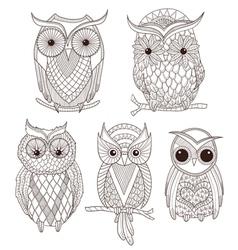 Set of cute owls vector image