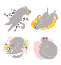 cute british shorthair cat collection 2 vector image