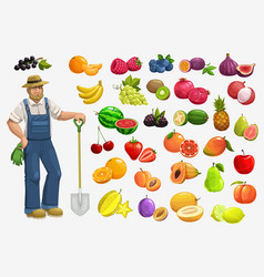farmer with fruits and berries gardening food vector image