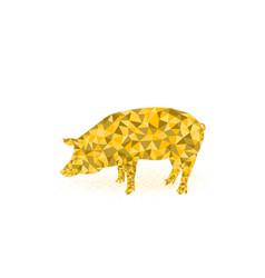 Golden pig symbol 2019 pig icon low poly design vector